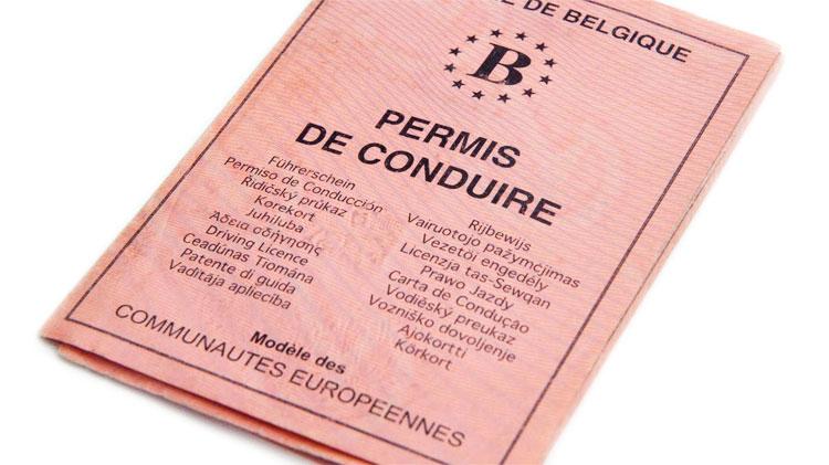 permis-belge-triptique-rose